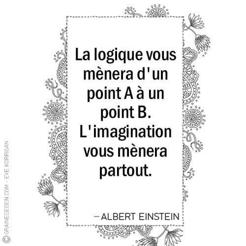 Graine d'Eden - Citations - ALBERT EINSTEIN