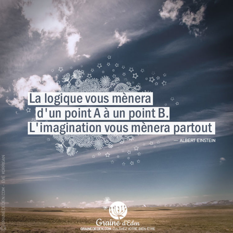 Citation - Albert Einstein - La logique vous mènera d'un point A à un point B. L'imagination vous mènera partout - Graine d'Eden