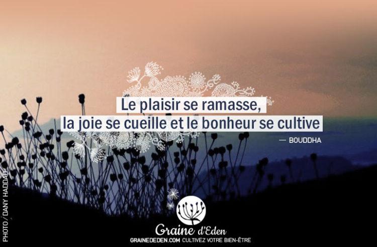 Le plaisir se ramasse, la joie se cueille et le bonheur se cultive.