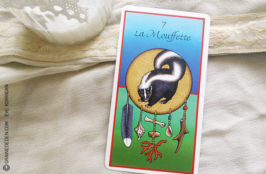 Les cartes médecines découvrir son animal totem - Graine d'Eden