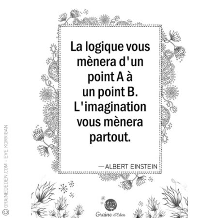 Graine d'Eden - citation - ALBERT EINSTEIN