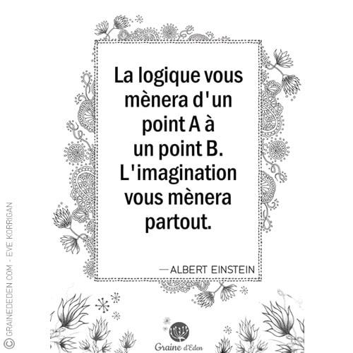 Graine d'Eden - citation - ALBERT EINSTEIN