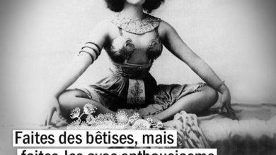 Citations Colette - Faites des bêtises, mais faites-les avec ...