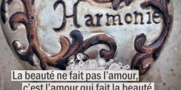 Citation - LÉON TOLSTOÏ - La beauté ne fais pas l'amour ...