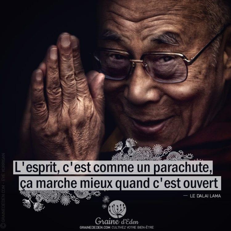 Citation - LE DALAÏ LAMA - L'esprit, c'est comme un parachute ...