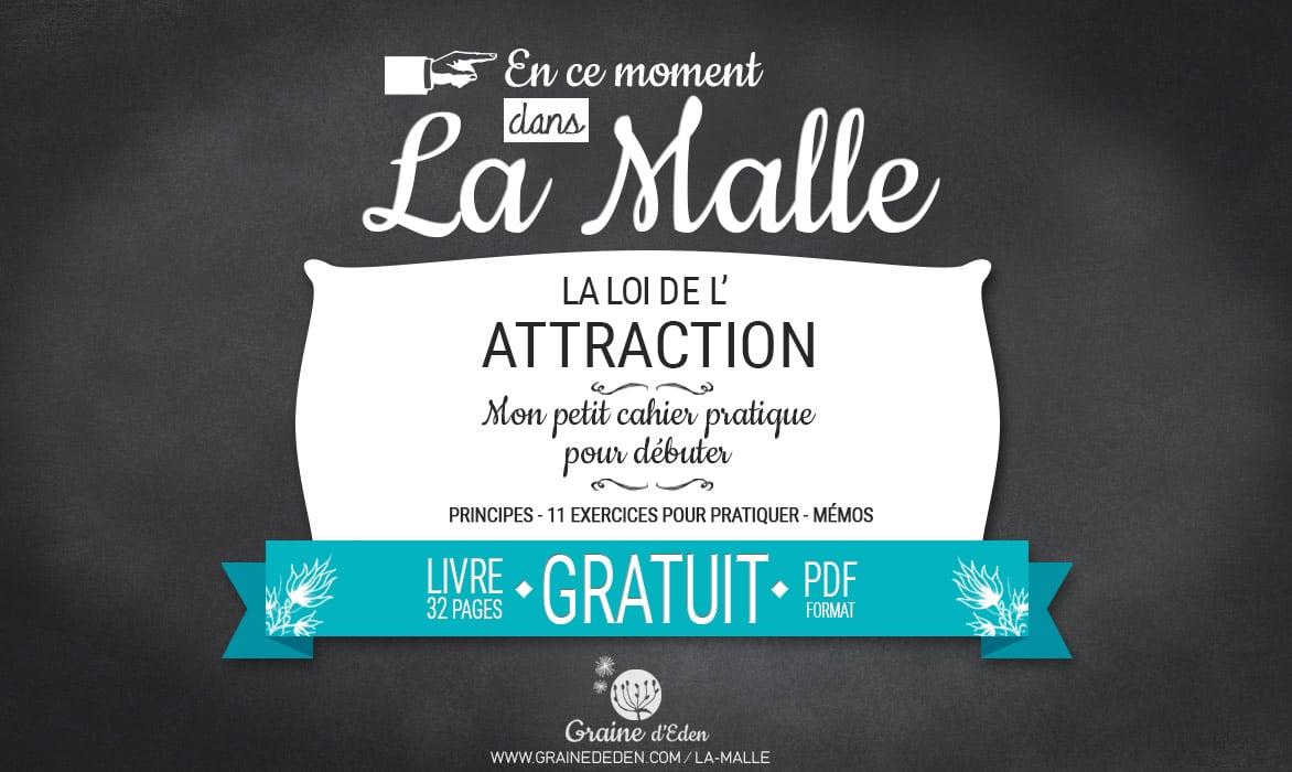 Nouveauté dans la Malle – La Loi de l'Attraction, le cahier pratique.