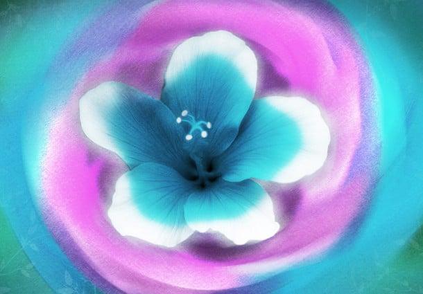 Retrouver l'harmonie et la paix avec Ho'oponopono