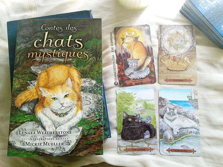 Le tarot des chats mystiques de Tarot-des-chats-mystiques-3