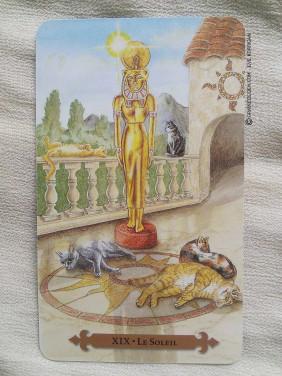 Le tarot des chats mystiques de Tarot-des-chats-mystiques-44-282x376