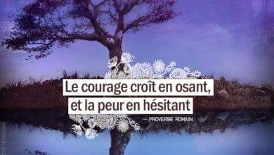 Graine d'Eden - Citation Proverbe Romain - Le courage croît en osant, et la peur en hésitant.