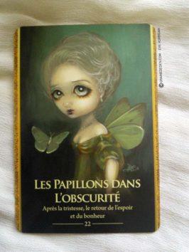 L'Oracle des Métamorphes de Lucy Cavendish - Graine d'Eden