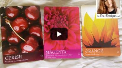 Revue oracle divinatoire - cartes le langage secret des couleurs review - Graine d'Eden - Eve Korrigan - Présentation, cours de tarots et oracles divinatoires