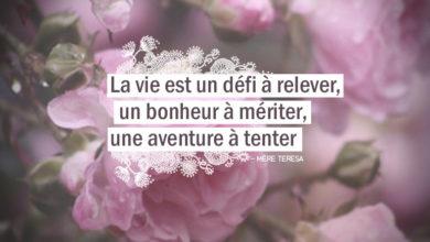 La vie est un défi à relever, un bonheur à mériter, une aventure à tenter. MÈRE TÉRÉSA Citation. Graine d'Eden citation