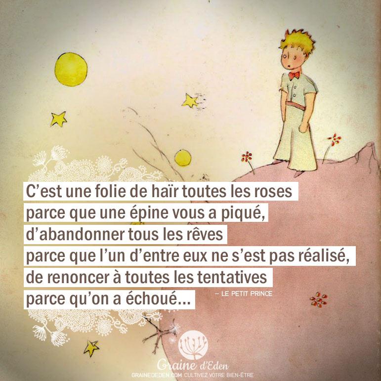 Le petit prince de St Exupéry - Page 2 Citation-Le-petit-prince