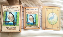 Review des cartes Messages de votre Animal Totem