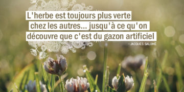 L'herbe est toujours plus verte chez les autres... jusqu'à ce qu'on découvre que c'est du gazon artificiel. JACQUES SALOME - Graine d'Eden Citation