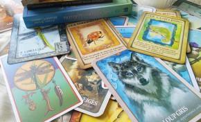 Animal Totem et médecine animale : quels sont les différents cartes oracle et comment bien choisir ?