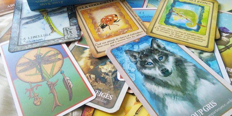 Animal Totem et médecine animale - quels sont les différents oracles divinatoires et comment bien choisir - Rêver de votre animal Totem - Les cartes médecines - Messages de votre animal Totem - Le langage secret des animaux - Graine d'Eden Review et cours de tarot et oracle divinatoires