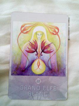 L'Oracle des esprits de la nature de Loan Miège - Présentation oracle divinatoire, tarot divinatoire, développement personnel - Graine d'Eden La bibliothèque des Oracles
