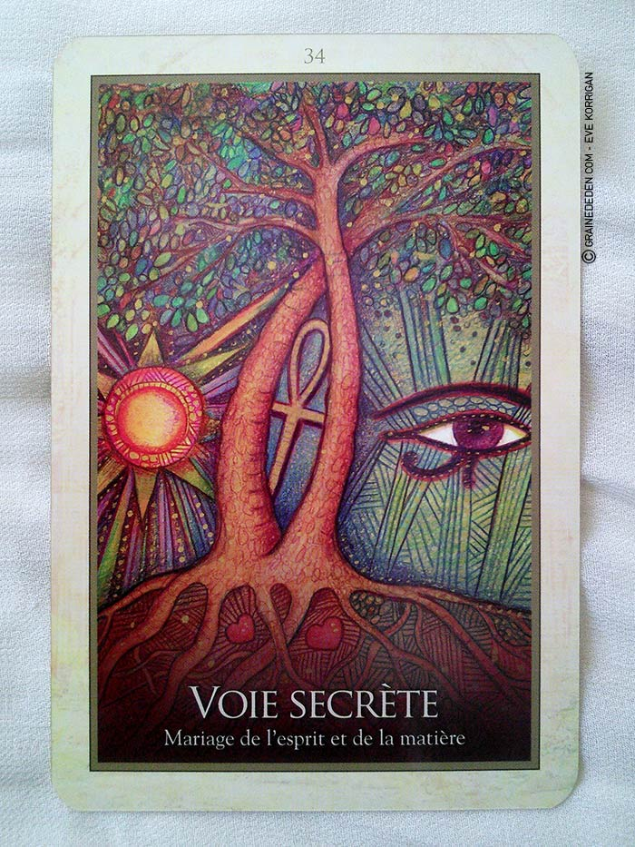 Oracle de Gaïa de Toni Carmine Salerno - Review et présentation de cartes oracle - Graine d'Eden - Développement personnel, spiritualité, guidance, oracles et tarots divinatoires
