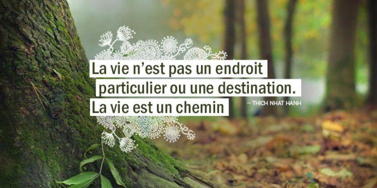 La vie n'est pas un endroit particulier ou une destination. La vie est un chemin. THICH NHAT HANH - Graine d'Eden Citation
