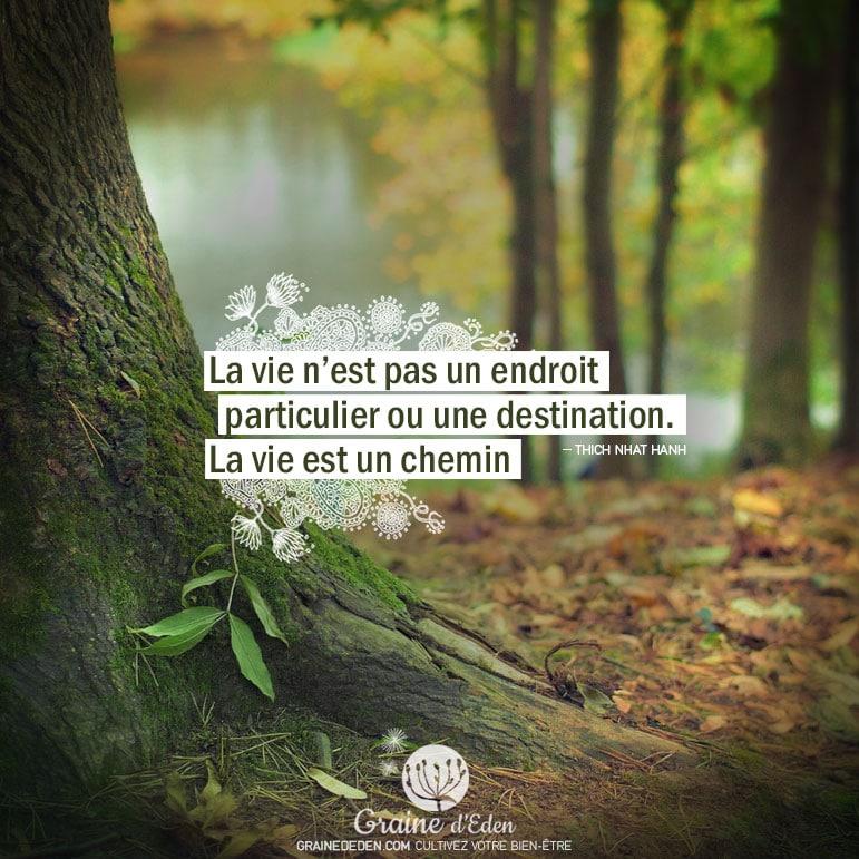 la vie n u0026 39 est pas un endroit particulier ou une destination