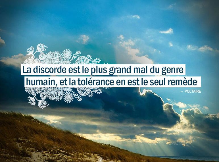 La discorde est le plus grand mal du genre humain, et la tolérance en est le seul remède. VOLTAIRE - Graine d'Eden Citation