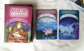 Review des cartes Oracle Magie de la Terre