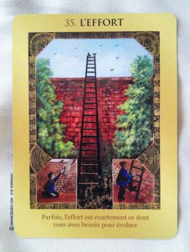 Le Jeu de votre Destin de Esméralda Bernard et Julian Van Bur - Graine d'Eden Développement personnel, spiritualité, guidance, oracles et tarots divinatoires - La bibliothèque des Oracles