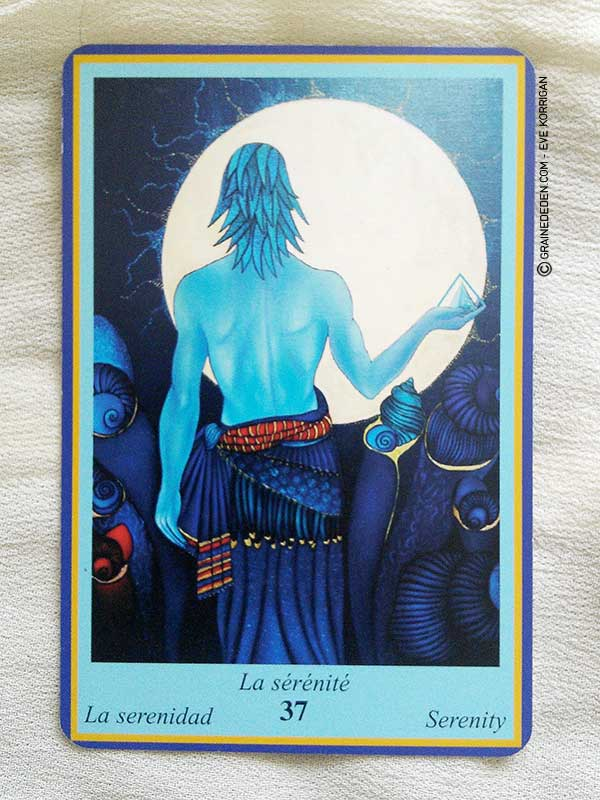 L Oracle Bleu de Sylvie Breysse et Didier Doryan - Graine d Eden  Développement a324439c95d6