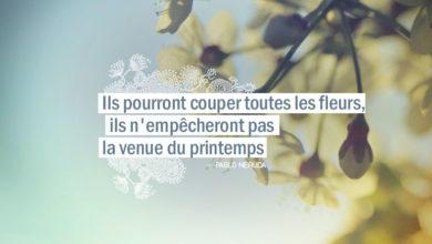 Ils pourront couper toutes les fleurs, ils n'empêcheront pas la venue du printemps. PABLO NERUDA - Graine d'Eden Citation