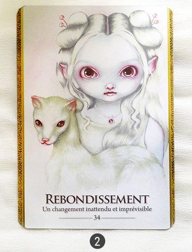 27 juin au 3 juillet - Votre guidance de la semaine avec Oracle des Métamorphes de Lucy Cavendish - Graine d'Eden Tarots et Oracles divinatoires