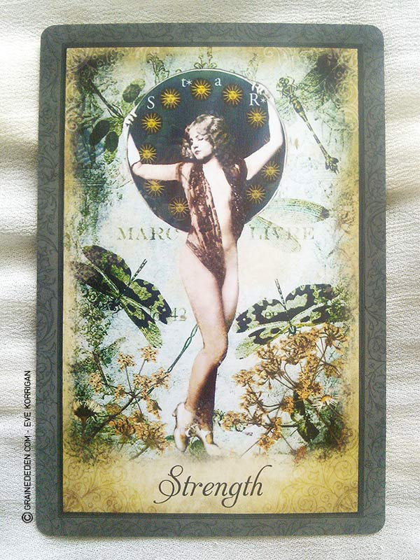 Vintage Wisdom Oracle Bonnie Cehovet: Vintage Wisdom Oracle De Victoria Moseley Review