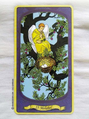 L'Oracle des Anges de Emilie Porte et Laure de Matharel - 72 Anges pour vous protéger - Graine d'Eden Développement personnel, spiritualité, guidance, oracles et tarots divinatoires - La bibliothèque des Oracles