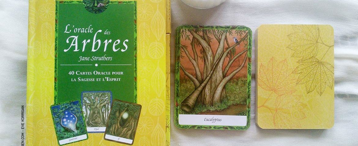 Review de L'Oracle des Arbres de Jane Struthers