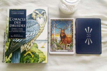 L'Oracle des Druides de Philip et Stephanie Carr-Gomm
