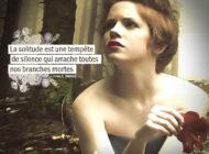 La Solitude est une tempête de silence qui arrache toutes nos ...