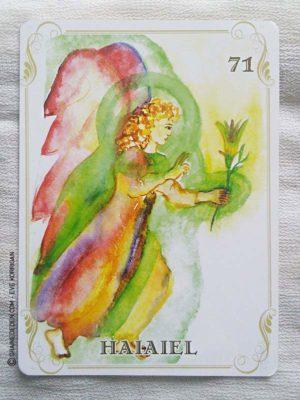 Les cartes des Anges de Haziel - Graine d'Eden Développement personnel, spiritualité, tarots et oracles divinatoires, Bibliothèques des Oracles, avis, présentation, review