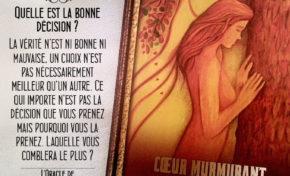 14 - Choix - Coeur Murmurant