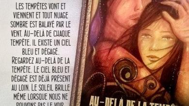 L'Oracle de l'Archange Michaël - L'Ange Bleu - Carte Au-delà de la Tempête - Graine d'Eden Développement personnel, spiritualité, tarots et oracles divinatoires, Bibliothèques des Oracles, avis, présentation, review