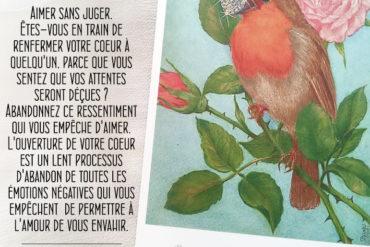 15 - Le Rouge-Gorge - Amour Divin