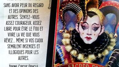 Divine Circus Oracle Cards - Carte Le Fou Sacré - Graine d'Eden Développement personnel, spiritualité, tarots et oracles divinatoires, Bibliothèques des Oracles, avis, présentation, review