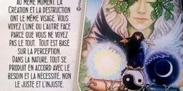 L'Oracle du Messager - Carte Besoin et nécessité - Graine d'Eden Développement personnel, spiritualité, tarots et oracles divinatoires, Bibliothèques des Oracles, avis, présentation, review