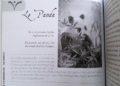 L'Oracle du Peuple Animal de Arnaud Riou - Graine d'Eden Développement personnel, spiritualité, tarots et oracles divinatoires, Bibliothèques des Oracles, avis, présentation, review