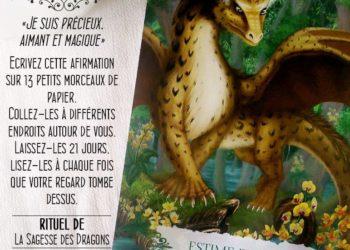 Les cartes Oracle Ls Sagesse des Dragons - Carte L'Estime de Soi - Graine d'Eden Développement personnel, spiritualité, tarots et oracles divinatoires, Bibliothèques des Oracles, avis, présentation, review