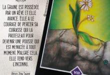 Tarot Osho Zen - Carte Le Courage selon Osho - Graine d'Eden Développement personnel, spiritualité, tarots et oracles divinatoires, Bibliothèques des Oracles, avis, présentation, review