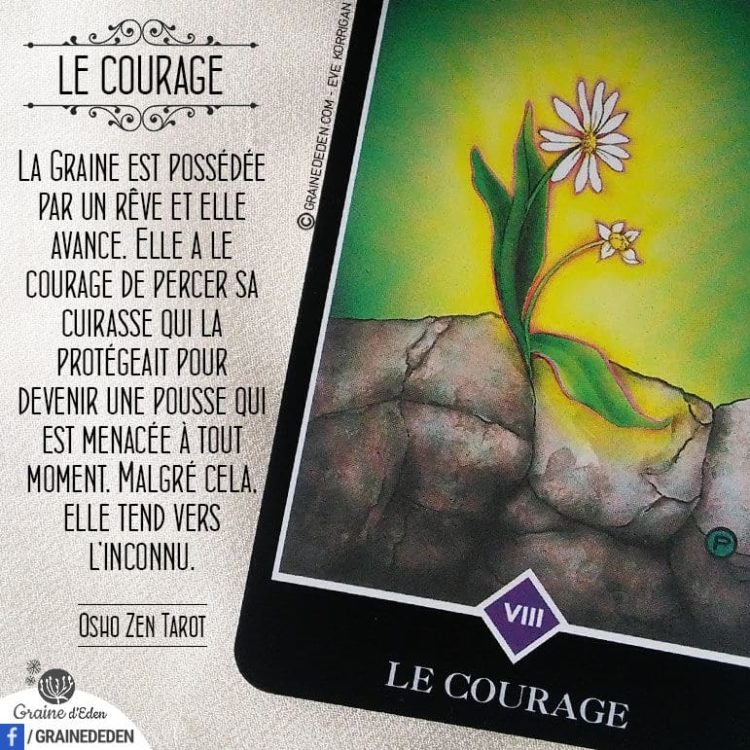 Tarot Osho Zen - Carte Le Courage selon Osho - Graine d'Eden Développement personnel, spiritualité, tarots et oracles divinatoires, Bibliothèques des Oracles, avis, présentation, review