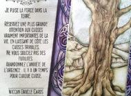 11 - Le Chêne
