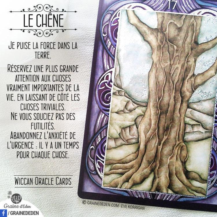 Wiccan Oracle Cards - Carte Le Chêne - Graine d'Eden Développement personnel, spiritualité, tarots et oracles divinatoires, Bibliothèques des Oracles, avis, présentation, review