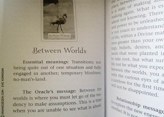 Wisdom of the Oracle de Colette Baron-Reid - Graine d'Eden Développement personnel, spiritualité, tarots et oracles divinatoires, Bibliothèques des Oracles, avis, présentation, review